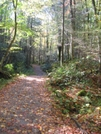 Porter's Creek Trail by HikerRanky in Trail & Blazes in North Carolina & Tennessee