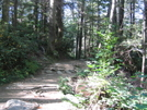 Still Going Up by HikerRanky in Other Trails