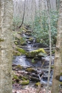 Beech Creek by envirodiver in Views in North Carolina & Tennessee