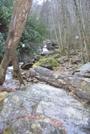 Shining Rock Wilderness Area