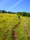 Siler Bald, At by Valentine in Section Hikers