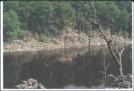 Beaver Pond in NJ
