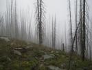 Kootenay Rockies by wilconow in Other Trails