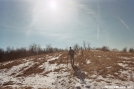 Snow, sun and hiker by wilconow in Trail & Blazes in Virginia & West Virginia