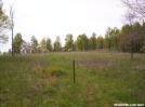 Meadow by wilconow in Trail & Blazes in Virginia & West Virginia