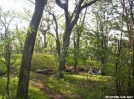 Campsite just north of the Priest by wilconow in Trail & Blazes in Virginia & West Virginia