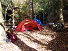 Bankhead National Forest by Hoppin John in Tent camping