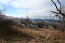 Frost At Bobs Bald by Hoppin John in Trail & Blazes in North Carolina & Tennessee