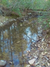 Uwharrie National Trail by Summit in Other Trails