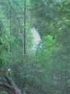 Laurel Fork Falls - Barely Visible