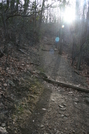 At Around And At Mary's Rock by bredler in Trail & Blazes in Virginia & West Virginia