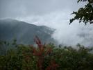 Snp View by Pony in Views in Virginia & West Virginia