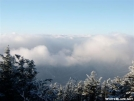 view from roan mtn by mikethulin in Views in North Carolina & Tennessee
