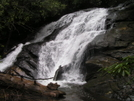 Bone Lady's 2008 Thru-hike by nightshaded in Views in Georgia