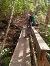 Bridge Across Waterfall Near Franklin by nightshaded in Trail & Blazes in North Carolina & Tennessee