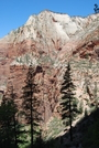 Utah, Zion, Dixie National Forest by yaduck9 in Other Trails