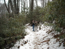 Lemon Gap To Max Patch by BDinSC in Views in North Carolina & Tennessee