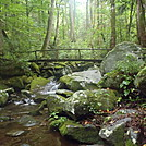 Cosby Creek on the Low Gap Trail by johnnybgood in Views in North Carolina & Tennessee