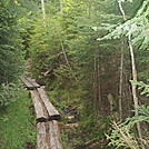 Wooden Planks on a trail by johnnybgood in Views in New Hampshire