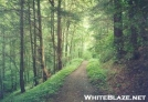 Trail past Apple tree shelter by shades of blue in Trail & Blazes in North Carolina & Tennessee