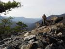 Sulphur Springs Trail, Nessmuk, Winston by Frau in Trail & Blazes in Virginia & West Virginia
