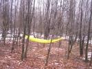 camping/ hammock