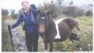 HH & Pony by Hammock Hanger in Views in Virginia & West Virginia