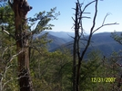 Trail View by HikerMan36 in Views in North Carolina & Tennessee