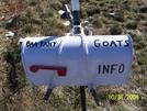 Goat Project!!