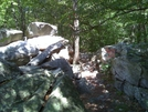 Trail Heading To The Pinnacle From Pulpit Rock ... by darkage in Trail & Blazes in Maryland & Pennsylvania
