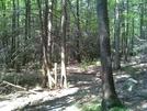 Trail Between Eckville/allentown 08-24-08 by darkage in Trail & Blazes in Maryland & Pennsylvania