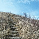 Max Patch Day Hike