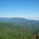 Overlook 1.6 miles north of Wesser Bald Shelter by SmokyMtn Hiker in Views in North Carolina & Tennessee