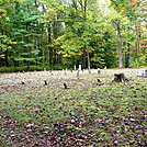 Hickory Flats Cemetery