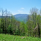 View of Unaka Mountain 0.8 mile north of Iron Mountain Gap