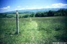 Trail through pasture by The Old Fhart in Trail & Blazes in Virginia & West Virginia