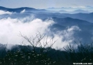 View from Wayah Bald by The Old Fhart in Views in North Carolina & Tennessee