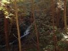 Panther Creek Falls 02/08