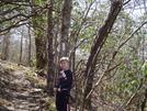 Tray Mountain 3/23/2008