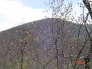 Unicoi To Dicks Creek by Bulldawg in Trail & Blazes in Georgia