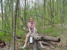 Standing Indian Memorial Day Hike. by Bulldawg in Trail & Blazes in North Carolina & Tennessee