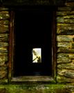 Blood Mountain Shelter - window by kentwill in Blood Mountain Shelter