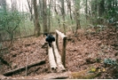 Scan0028 by CrumbSnatcher in Thru - Hikers