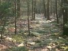 2008 AT Thru Hike by MattBuck30 in Thru - Hikers