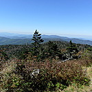 AT in the Smokies by wornoutboots in Trail & Blazes in North Carolina & Tennessee