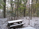 Early Snow In Georgia by MoBill122 in Trail & Blazes in Georgia