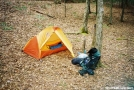 camp_at_Justus_creek by alpine in Gear Gallery