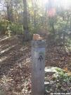 baby boot by MedicineMan in Trail & Blazes in Virginia & West Virginia