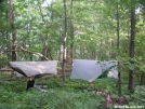 stealth hammocking