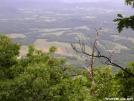 Scenic Valley by MedicineMan in Views in Virginia & West Virginia
